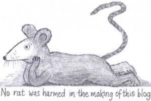 rat pic 3