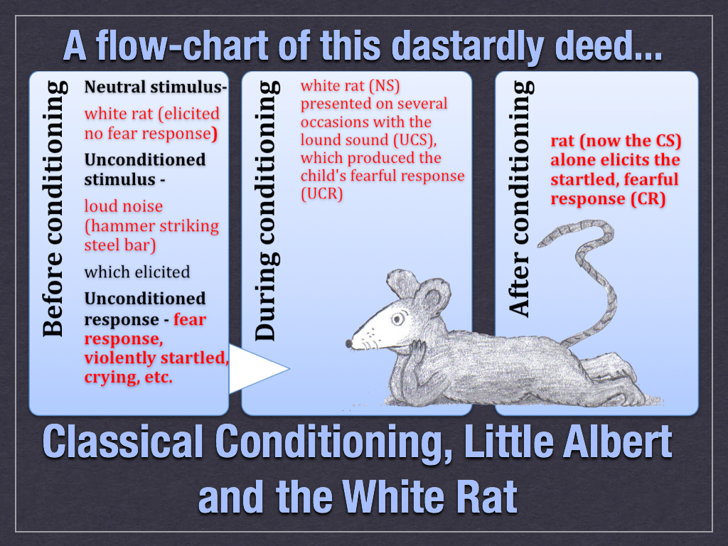 little albert classical conditioning essay little albert classical conditioning essay one day